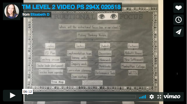 TM Level 2 Video PS 294X 020518